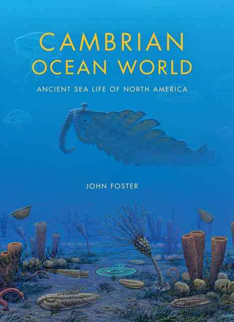 Cambrian Ocean World By Foster, John